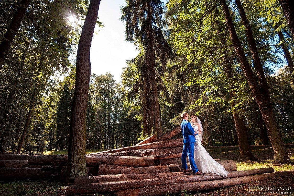 фото в лесу