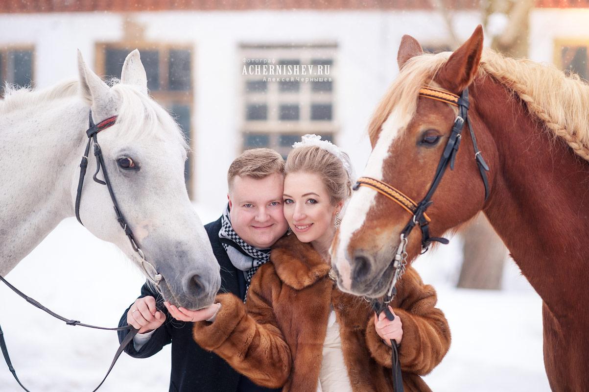 Фотосессия на лошадях зимой