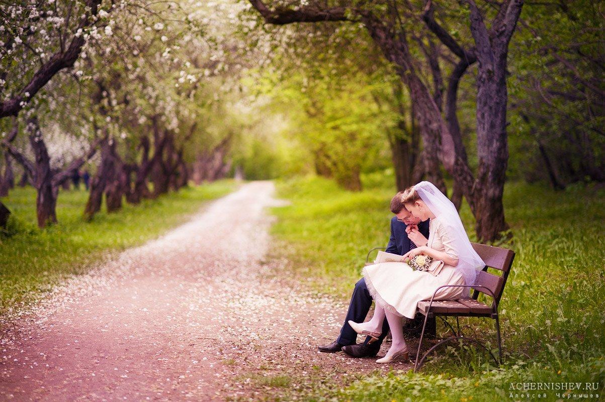 изучение свидетельства о заключении брака в парке на лавочке