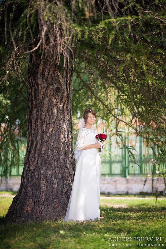 невеста под деревом