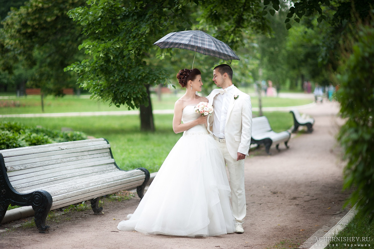 прогулка жениха и невесты под зонтиком