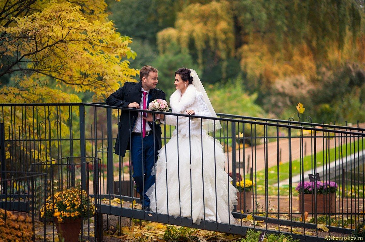 Свадьба в геркулесе 95