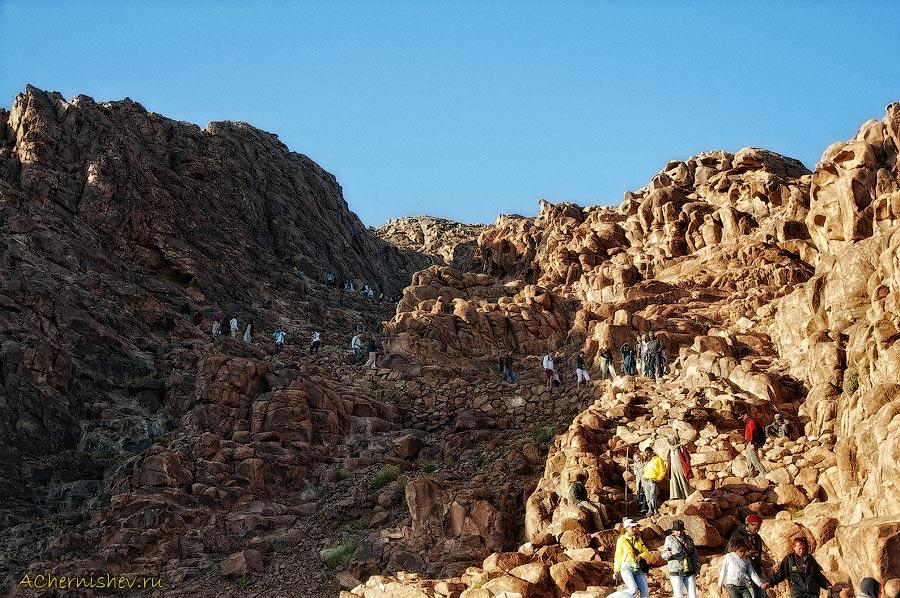 посещение Египта туристами