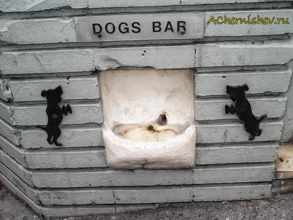 поилки для собак в Париже