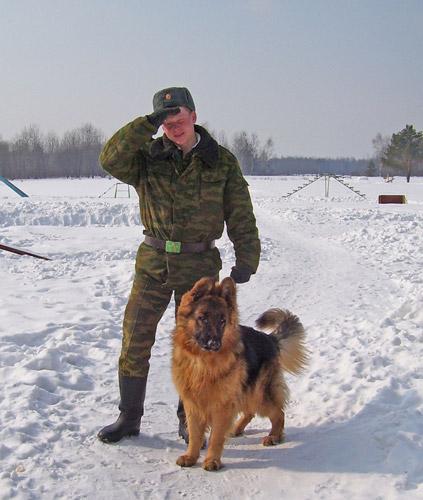 2006-armiya